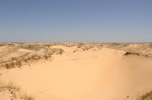 Украинская пустыня - Алешковские пески